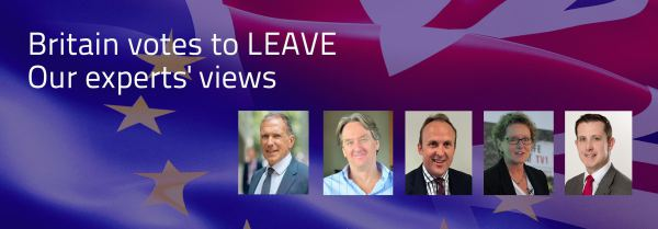 Brexit: Views from the Thames Valley